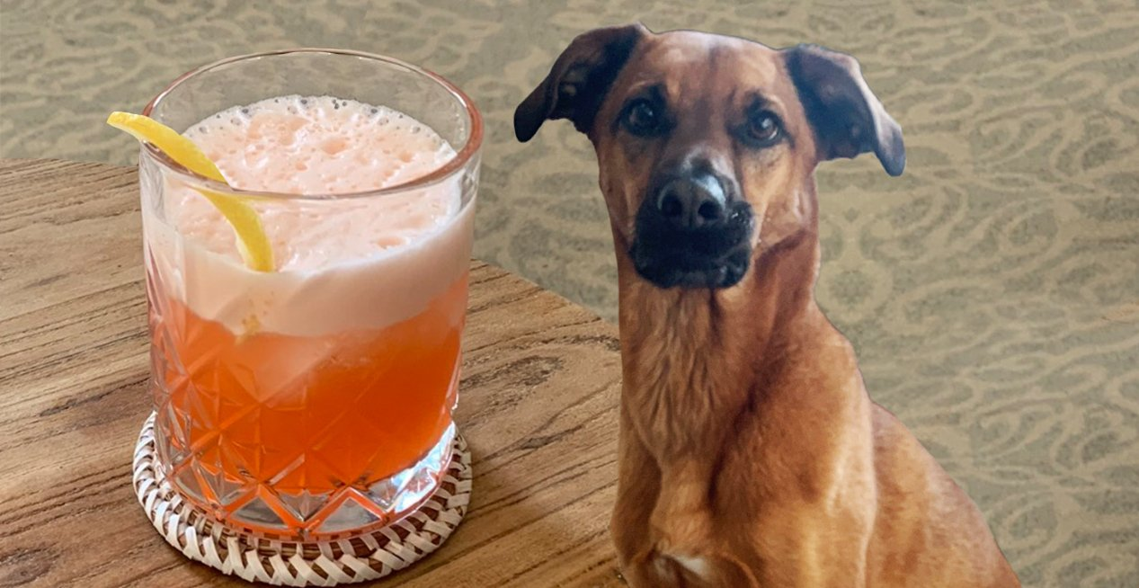 Featured Recipe: Moose's Summer Spritz